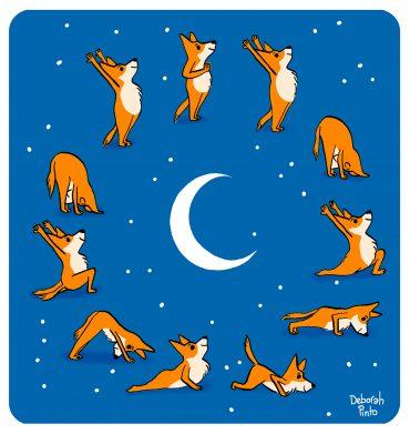 Illustration séquence yoga