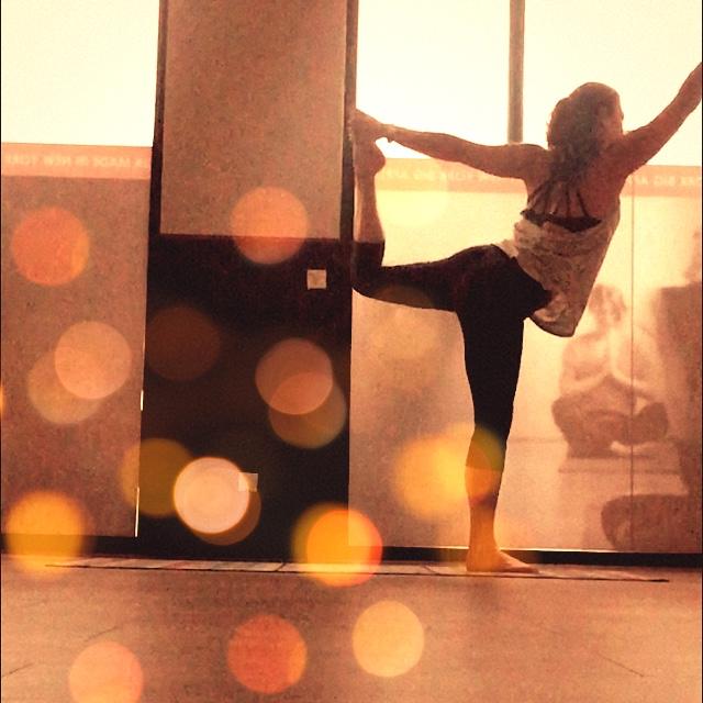 vie de yogi